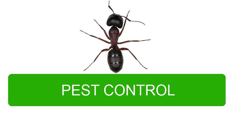 Portland Pest Controle